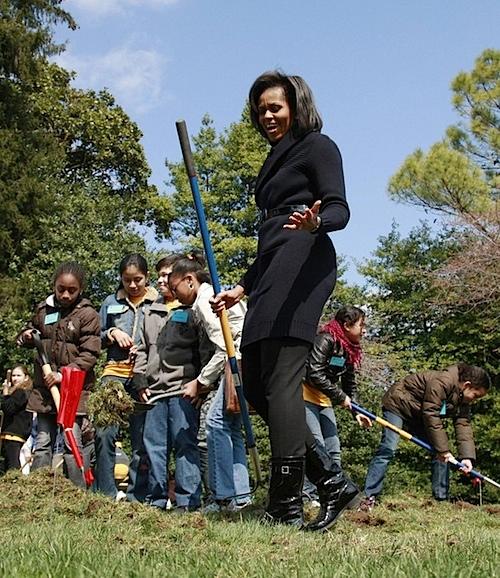 Michelle's garden.jpg