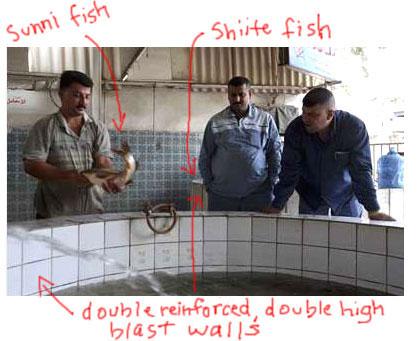 Sunni-Fish-1