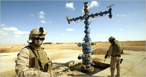 Sunni-Oil