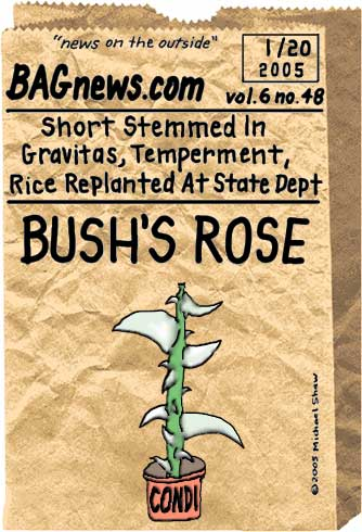 Vol6No48Bushsrose80